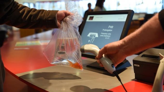 Emprunt à une banque de prêt d'un poisson rouge conditionnée dans un sac équipé d'un code-à-barres.