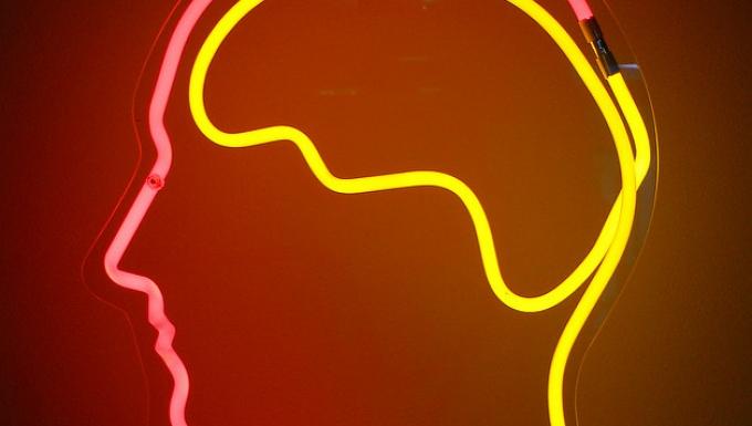 Néons de couleur représentant une tête de profil avec cerveau