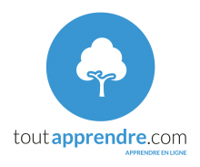 Logo de ToutApprendre : arbre blanc sur fond bleu