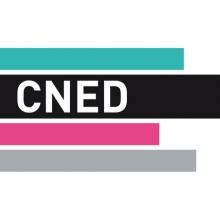 Logo CNED : 3 bandes de couleurs horizontales (verte, violette et grise). Une bande noire intègre les lettres de l'institution.