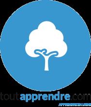 Logo de la ressources représentant un arbre blanc sur un fonds arrondi bleu