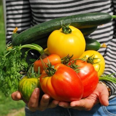 Un personne portant des légumes dans ses bras.