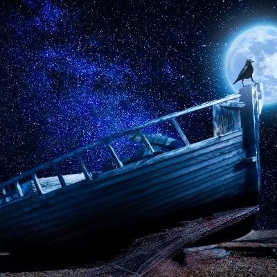 Un corbeau sur un bateau pendant une nuit étoilée