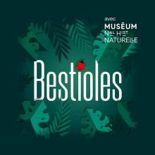 """Le mot """"Bestioles"""" entouré d'une flore de jungle et surmonté d'une coccinelle"""